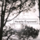 Watch Craig Lucas' 'Hearts Exposed'
