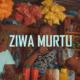 DJ Vetkuk and Mahoota's 'Ziwa Murtu' reaches one million views on YouTube