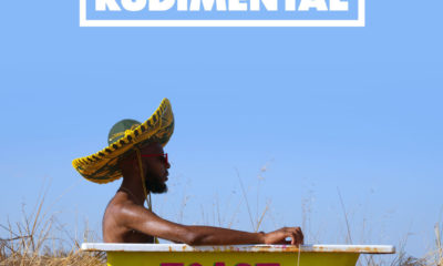 Rudimental cancel South African leg of Toast To Our Differences tour