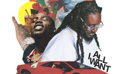 Listen to T-Pain's new single, All I Want, featuring Flipp Dinero