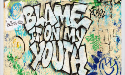 Blink 182 - Blame It On My Youth