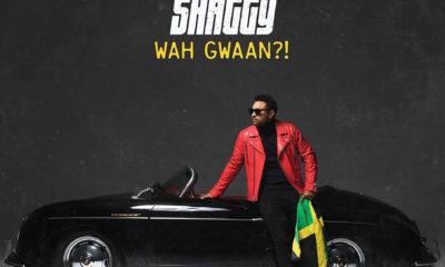 Shaggy album Wah Gwaan?!