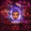 Chris Brown album Indigo