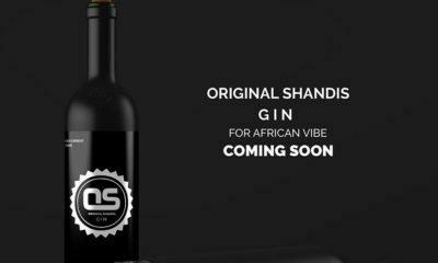 Mampintsha gin Original Shandis