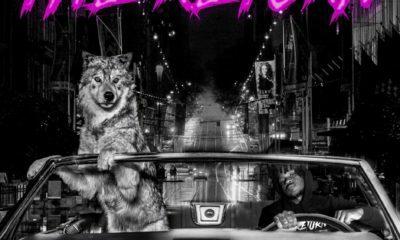 Aewon Wolf Album The Return