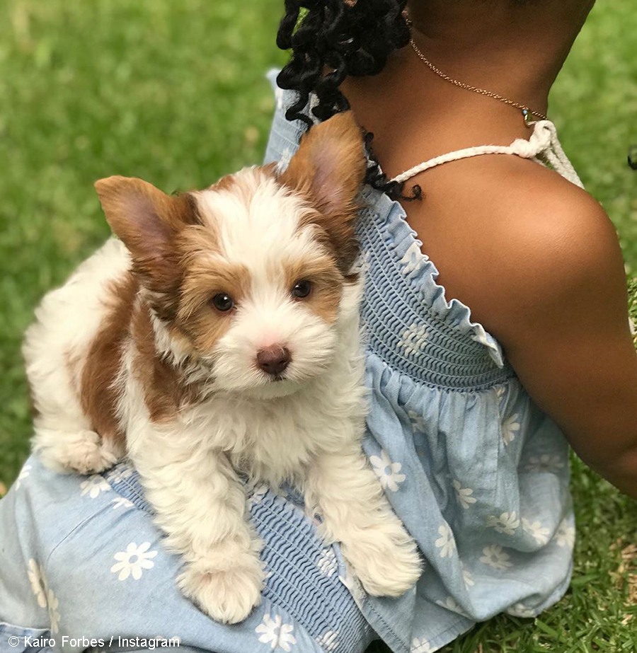 DJ Zinhle and AKA's daughter, Kairo Kleo Forbes Instagram page